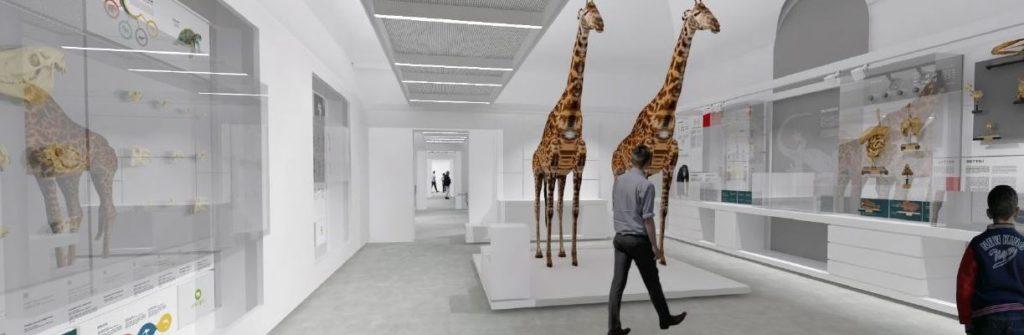Kosmos museo Pavia
